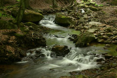 Mountain stream. Ilse in the National Park Upper Harz in Saxony-Anhalt / Germany Stock Photos
