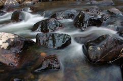 Mountain stream. Water flows along a mountain stream in Rocky Mountain National Park Royalty Free Stock Photos