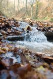 Mountain Stream. With motion blurred water Stock Images
