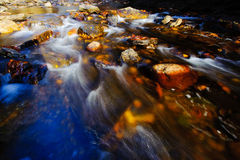 Mountain Stream. Located in the North Carolina mountains Royalty Free Stock Photos
