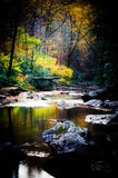 Mountain Stream. Located in the North Carolina mountains Stock Photography