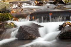 Mountain stream Royalty Free Stock Images