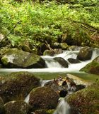 Mountain stream. Water flows along a mountain river stream royalty free stock images