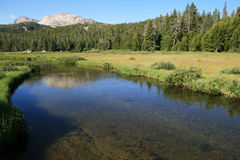 Mountain stream. Popo Agie mountain stream in the Wind River Range of Wyoming Royalty Free Stock Images
