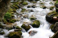 Mountain stream. In the Polish Tatras Royalty Free Stock Photos