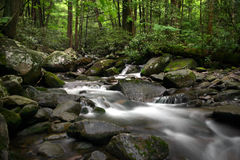 Mountain Stream. Stream found in the Smoky Mountains Royalty Free Stock Images