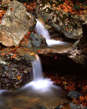 Mountain stream. In Mt. Pelion, Greece Royalty Free Stock Photos