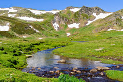 Mountain stream. In Pyrenees at summer Royalty Free Stock Photography