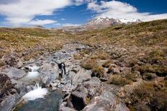 Mountain stream. Stream of water from melting glacier in Tangoriro National Park, New Zealand stock photos