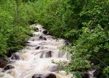 Mountain stream. In Norway, Europe Royalty Free Stock Photo