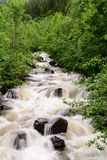Mountain stream. In Norway, Europe Royalty Free Stock Photography