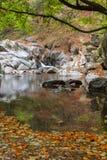 Mountain stream Royalty Free Stock Photo