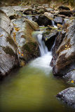 Mountain stream Royalty Free Stock Photo