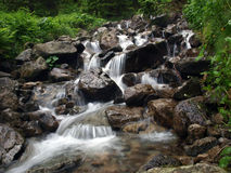 A mountain stream Stock Image