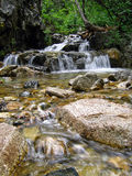 Mountain Stream. In New Mexico Stock Photo