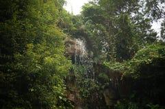 The mountain stream Stock Photos