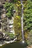 Mountain stream. Amazingly beautiful falls with greenish water in a granite channel of a mountain stream Stock Photography