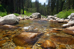 Mountain stream. Crisp and clear water of a mountain stream running through the forest Stock Photography