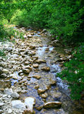 Mountain stream. Big Crimean Kanyon Stock Photo