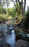 Mountain Stream. Image of a mountain stream below a waterfall Royalty Free Stock Photo
