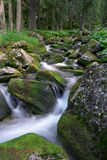 Mountain stream. Pass through the forest at mountain stock image