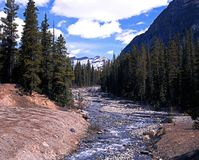 Mountain Stream, Alberta. Stock Photography