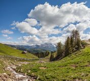 Mountain stream on the Alpe di Siusi Royalty Free Stock Images
