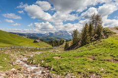 Mountain stream on the Alpe di Siusi Stock Images