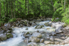 Mountain stream in the alps, Germany Stock Photography