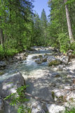Mountain stream in the alps, Germany Royalty Free Stock Images