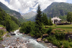 Mountain stream in the Alps Royalty Free Stock Image