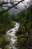Mountain stream in the Alps Stock Photo