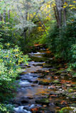 Mountain Stream Art. Mountain stream near Sliding Rock in Pisgah National Forest.  Fall color mixes with the evergreens.  Fallen leaves and moss covered rocks Stock Image