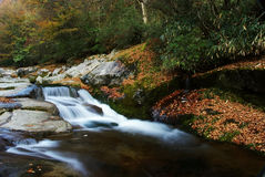 Mountain stream in autumn Royalty Free Stock Image