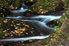 Mountain stream in autumn Stock Image