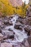 Mountain Stream in Autumn Stock Photos