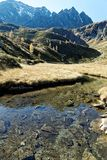 Mountain Stream in Autumn. Clear little stream on the mountainside flowing leisurely inmidst autumnal meadows high up in the mountains. In the background golden Royalty Free Stock Image