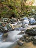 Mountain stream in autumn, fall. Stock Photo