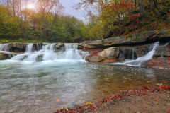 Mountain stream in autumn. Fallen leaves Royalty Free Stock Image