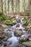 Mountain stream in autumn Royalty Free Stock Photography