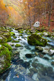 Mountain stream in autumn, Julian Alps, Italy Stock Photography