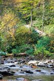 Mountain Stream in Autumn royalty free stock images