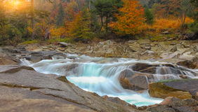 Mountain stream in autumn at sunset. Multi-color wood Stock Photos