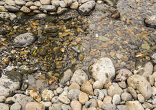 Mountain stream. At  autumn time.Stones and running water Stock Photography