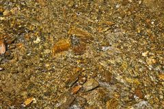 Mountain stream background Royalty Free Stock Photo