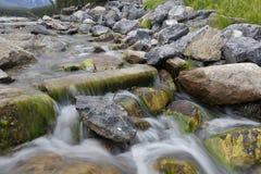 Mountain Stream - Banff National Park, Canada Royalty Free Stock Photo
