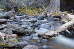 Mountain Stream Bear Creek Okanagan Valley BC Stock Images