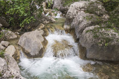 Mountain Stream. Beautiful mountain stream located in the Paklenica National Park in Croatia Royalty Free Stock Photos