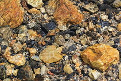 Mountain Stream Bed Stock Photography