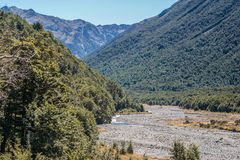 Mountain Stream. Through the beech forest. Hawden river, Mid Canterbury, New Zealand. Southern Alps Royalty Free Stock Photo